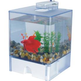 Mini Acuario Acrílico AquaBox Betta con Iluminación Led a Pilas 15x15x14,5cm