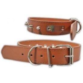 Collar en cuero marrón con placa y picos en metal (3,0x55cm)